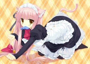 Rating: Safe Score: 38 Tags: animal_ears digital_version maid miyasu_risa nanakase_gizmo nekomimi nekonade_distortion tail whitesoft User: Anonymous