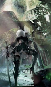 Rating: Questionable Score: 18 Tags: ass dress heels leotard male nier_automata sword tagme thighhighs yorha_no.2_type_b yorha_no._9_type_s User: Genex