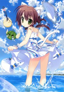 Rating: Questionable Score: 39 Tags: animal_ears dress fujima_takuya loli nekomimi pantsu shimapan skirt_lift summer_dress tail User: crim