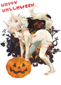 Rating: Safe Score: 12 Tags: animal_ears bleach halloween hitsugaya_toushirou male tail yurane User: charunetra