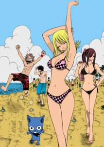Rating: Safe Score: 31 Tags: bikini cleavage erza_scarlet fairy_tail gray_fullbuster happy_(fairy_tail) jpeg_artifacts lucy_heartfilia mashima_hiro natsu_dragneel photoshop swimsuits User: Vampire1805