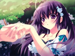 Rating: Safe Score: 55 Tags: cleavage game_cg izumi_tsubasu mashiroiro_symphony onomiya_yutsuki User: fairyren