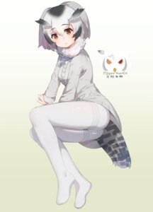 Rating: Safe Score: 31 Tags: feet kemono_friends northern_white-faced_owl pantyhose tail ze_(wzfnn001) User: Mr_GT