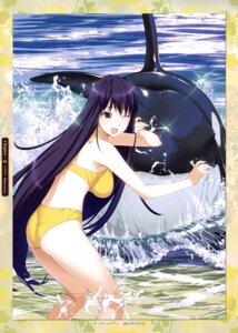 Rating: Safe Score: 43 Tags: bikini front_wing grisaia_no_kajitsu grisaia_no_rakuen sakaki_yumiko swimsuits watanabe_akio User: Hatsukoi