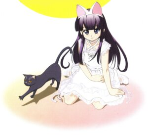 Rating: Safe Score: 6 Tags: animal_ears hazuki nekomimi screening tsukuyomi_moon_phase User: Davison