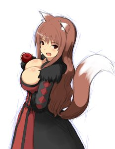 Rating: Safe Score: 33 Tags: animal_ears cleavage cosplay dress holo hu_sea maou_(maoyuu_maou_yuusha) maoyuu_maou_yuusha spice_and_wolf tail User: gibwar