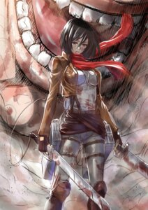 Rating: Questionable Score: 51 Tags: blood mikasa_ackerman shingeki_no_kyojin zucchini User: 23yAyuMe