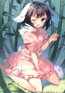 Rating: Questionable Score: 37 Tags: animal_ears bunny_ears inaba_tewi rie tail touhou User: Radioactive