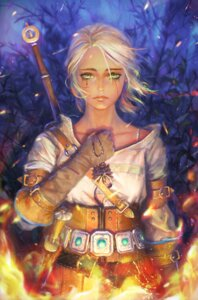 Rating: Safe Score: 41 Tags: ciri nababa sword the_witcher the_witcher_3 weapon User: Mr_GT