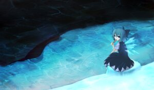 Rating: Safe Score: 10 Tags: cirno rexient touhou User: Radioactive