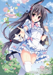 Rating: Safe Score: 43 Tags: animal_ears dress izumi_nanase possible_duplicate thighhighs User: kiyoe