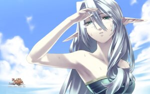 Rating: Safe Score: 17 Tags: agarest_senki elf hirano_katsuyuki megane pointy_ears sharona swimsuits wallpaper wet User: Radioactive