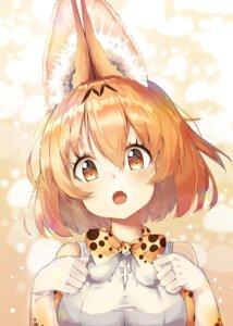 Rating: Safe Score: 49 Tags: animal_ears animal_ears_(artist) kemono_friends serval User: Mr_GT