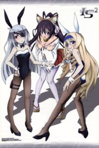 Rating: Questionable Score: 71 Tags: animal_ears ass breast_hold bunny_ears bunny_girl cecilia_alcott cleavage eyepatch fixme heels infinite_stratos infinite_stratos_2 laura_bodewig miko no_bra pantyhose shinonono_houki tail yamamoto_shuuhei User: DDD