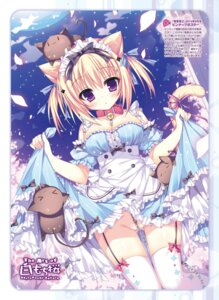 Rating: Questionable Score: 104 Tags: animal_ears cleavage digital_version neko nekomimi nopan shiromochi_sakura skirt_lift stockings tail thighhighs User: Twinsenzw
