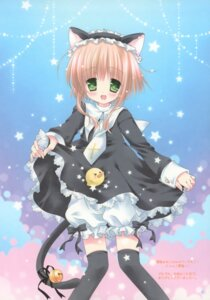 Rating: Safe Score: 23 Tags: animal_ears bloomers nekomimi nostalgic_barbie okazaki_anko tail thighhighs User: syaoran-kun
