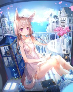 Rating: Safe Score: 16 Tags: animal_ears b_rock dress summer_dress tail User: BattlequeenYume