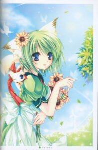 Rating: Safe Score: 18 Tags: animal_ears binding_discoloration greenwood hareko midori nekomimi User: cheese