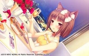Rating: Safe Score: 18 Tags: animal_ears azuki dress game_cg neko_works nekomimi nekopara sayori User: kotorilau