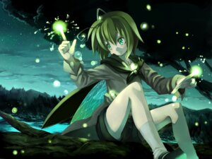 Rating: Safe Score: 19 Tags: landscape morino_hon touhou wings wriggle_nightbug User: Radioactive