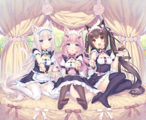 Rating: Safe Score: 91 Tags: animal_ears chocola cleavage fraise maid neko_works nekomimi nekopara nekoparaiten! sayori thighhighs vanilla waitress User: kotorilau