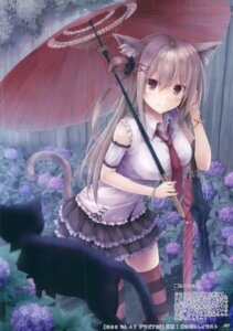 Rating: Safe Score: 130 Tags: animal_ears neko nekomimi suien tail thighhighs umbrella User: Twinsenzw