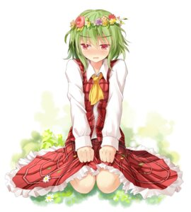 Rating: Safe Score: 33 Tags: efe kazami_yuuka touhou User: fairyren