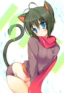 Rating: Questionable Score: 40 Tags: animal_ears buruma kiki-chan nekomimi sakura_hanpen tail User: blooregardo