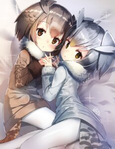Rating: Safe Score: 71 Tags: eurasian_eagle_owl kemono_friends northern_white-faced_owl pantyhose tail yamacchi User: Mr_GT