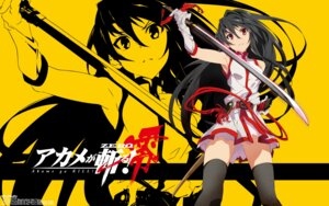 Rating: Questionable Score: 20 Tags: akame akame_ga_kill! akame_ga_kill!_zero dress sword tagme thighhighs wallpaper User: Korino