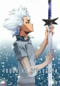 Rating: Safe Score: 8 Tags: bleach hitsugaya_toushirou male sword User: charunetra