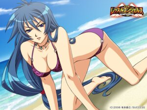 Rating: Safe Score: 26 Tags: bikini cleavage hal nakamori_azumi success swimsuits wallpaper wrestle_angels wrestle_angels_survivor User: grimmjow