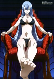 Rating: Questionable Score: 81 Tags: akame_ga_kill! bikini cleavage esdeath feet nakamura_kazuhisa swimsuits tattoo User: drop