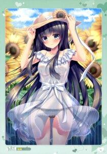Rating: Questionable Score: 81 Tags: areola cameltoe dress mizuki_yuuma no_bra pantsu see_through summer_dress User: drop