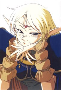 Rating: Safe Score: 8 Tags: deedlit elf pointy_ears record_of_lodoss_war tagme User: Radioactive