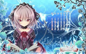 Rating: Safe Score: 47 Tags: calendar hapymaher koku lolita_fashion naitou_maia purple_software wallpaper User: moonian