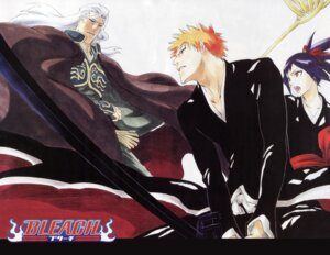 Rating: Safe Score: 5 Tags: bleach kubo_tite kurosaki_ichigo senna User: Radioactive