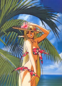 Rating: Safe Score: 16 Tags: bikini deedlit elf izubuchi_yutaka pointy_ears record_of_lodoss_war screening swimsuits User: charunetra