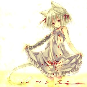 Rating: Safe Score: 15 Tags: animal_ears dress nekomimi otsuo summer_dress tail User: Radioactive
