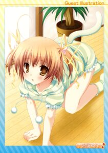 Rating: Safe Score: 33 Tags: delivara! narumi_yuu tail yufu_sumika User: Kalafina