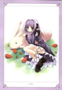 Rating: Safe Score: 9 Tags: animal_ears bunny_ears farfa lolita_fashion magical_tale pantsu tinkle User: noirblack