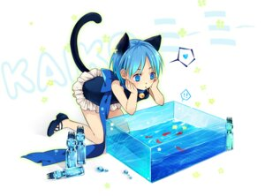 Rating: Safe Score: 19 Tags: animal_ears kaito nekomimi saiyki tail vocaloid User: fireattack
