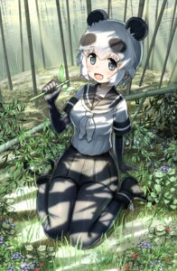 Rating: Safe Score: 15 Tags: animal_ears ayatarosu kemono_friends panda_(kemono_friends) pantyhose seifuku User: Mr_GT