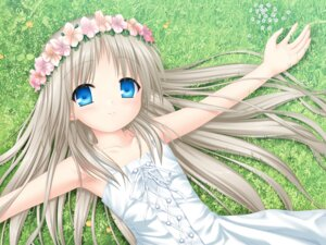 Rating: Safe Score: 23 Tags: dress key kud_wafter little_busters! na-ga noumi_kudryavka summer_dress wallpaper User: marechal