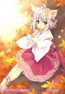 Rating: Safe Score: 28 Tags: animal_ears hayase_akira lolita_fashion wa_lolita User: fireattack