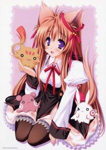 Rating: Safe Score: 24 Tags: animal_ears kitsune lump_of_sugar mito_mashiro moekibara_fumitake pantyhose seifuku tail tayutai tayutama User: Gekisoku
