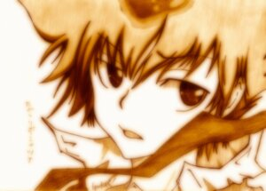 Rating: Safe Score: 3 Tags: godees katekyo_hitman_reborn! male monochrome sawada_tsunayoshi User: charunetra