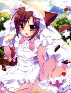Rating: Questionable Score: 55 Tags: animal_ears maid nanaca_mai nekomimi tail User: drop