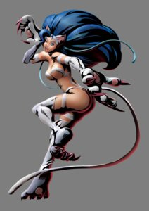 Rating: Safe Score: 25 Tags: animal_ears ass capcom dark_stalkers felicia marvel_vs_capcom marvel_vs_capcom_3 nekomimi shinkirou tail thighhighs transparent_png User: Radioactive
