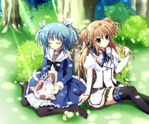 Rating: Safe Score: 46 Tags: mashiroiro_symphony nanairo_fuusen neko pannya pantyhose seifuku sena_airi thighhighs uryuu_sakuno User: ddns001